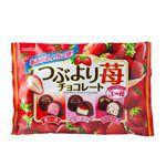 Meiji - 綜合草莓巧克力-163g