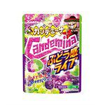 KANRO - Candemina軟糖 葡萄感Live水果口味-40g